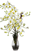 Cream Dendrobium Orchid with Vase, 35 High