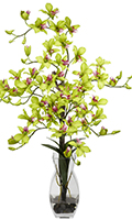 Green Dendrobium Orchid with Vase, 35 High