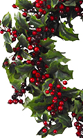 Red Berries, Varigated Leaves 24-Inch Holly Berry Wreath, 24 Inch High