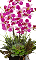 Purple Orchid & Succulent, 26 Inch High